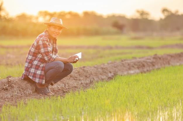 Aziatische jonge landbouwer die tablet gebruiken bij het groene padieveld