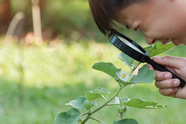 Aziatische jongen die bladeren door een vergrootglas bekijkt