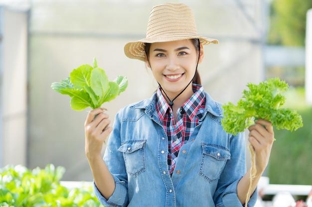 Aziatische landbouwer bij het hydroponic landbouwbedrijf van de groentensalade.