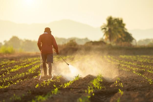 Aziatische landbouwer die op het gebied werkt en chemisch product bespuit
