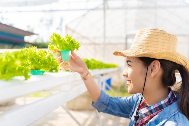 Aziatische landbouwers die het hydroponic landbouwbedrijf van de groentensalade houden.