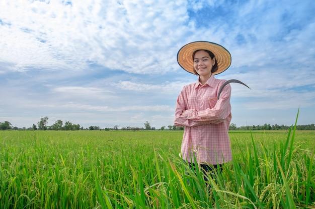 Aziatische landbouwers vrouwelijke tribune die met het glimlachen gezichten groene padievelden en blauwe hemel bekijken.