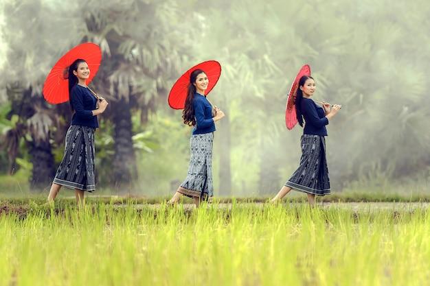 Aziatische lokale vrouw die zich met rode paraplu in rijstlandbouwbedrijf bevinden, sakonnakhon, thailand