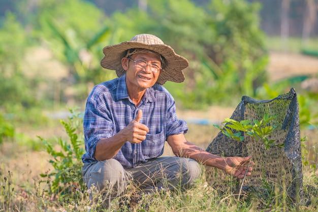 Aziatische man senior farmer, aziatische man boer op lege kopie ruimte