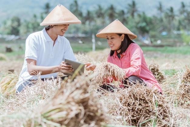 Aziatische mannelijke en vrouwelijke landbouwer die tabletpc gebruiken voor het oogsten van padie in het veld