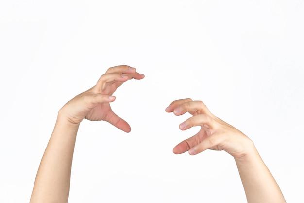 Aziatische mannelijke hand opent palm en post als een dierlijke klauw in studio licht geïsoleerde witte achtergrond met uitknippad.
