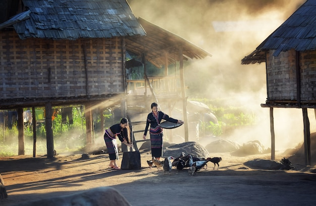 Aziatische meisjes die kippen voeden bij het platteland van laos