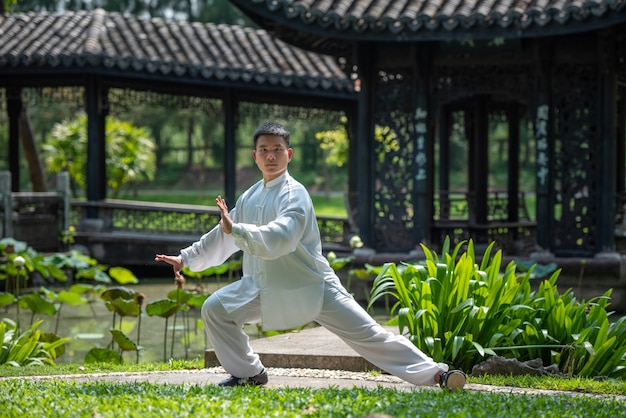 Aziatische mens die met tai chi in de ochtend bij het park, chinese vechtsporten, gezonde zorg voor het levensconcept uitwerken.