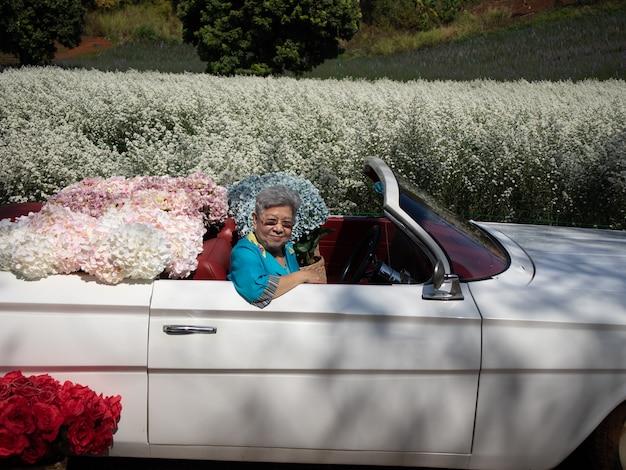 Aziatische oude oudere vrouwelijke oudere vrouw senior rijden retro klassieke auto met hortensia bloem in cutter aster tuin