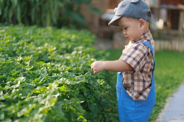 Aziatische peuter jongen spelen in de tuin