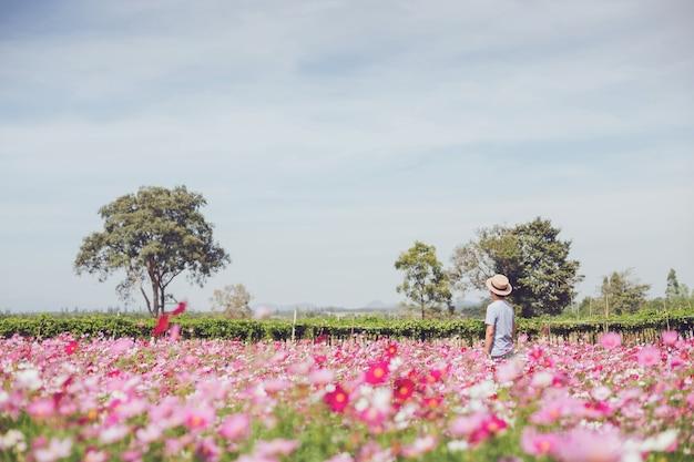 Aziatische reiziger man lopen en foto nemen in cosmos bloem veld landschap achtergrond. concept van reizen in het zomerseizoen in thailand.
