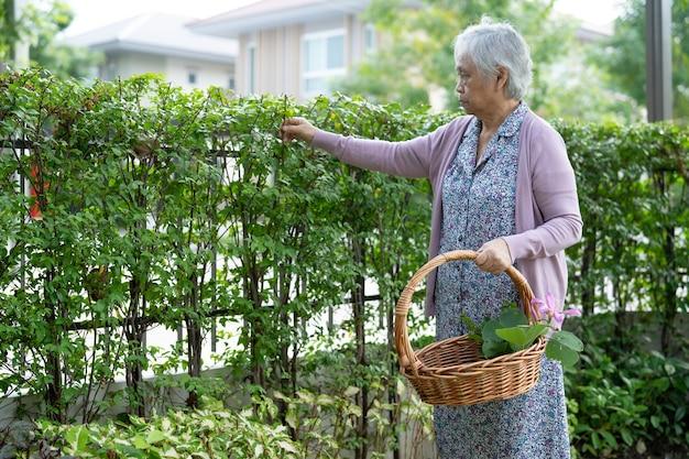 Aziatische senior of oudere oude dame die voor het tuinwerk thuis zorgt, hobby om te ontspannen en te oefenen met gelukkig