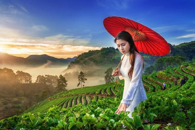 Aziatische vrouw die de cultuur van vietnam traditioneel in aardbeientuin dragen op doi ang khang, chiang mai, thailand.