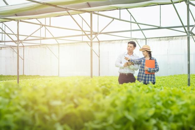 Aziatische vrouw landbouwer houden document bestanden punt pen naar groene sla voor aziatische man wetenschapper kijken kom check kwaliteit.