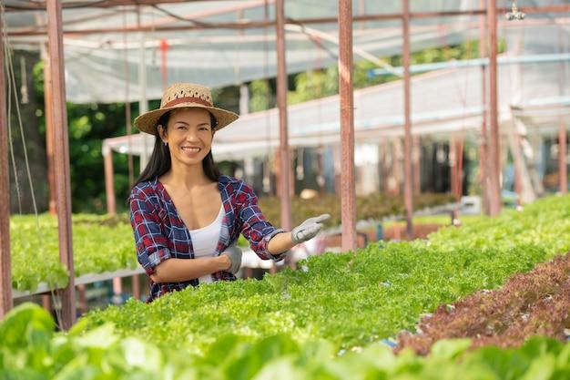 Aziatische vrouwelijke boeren werken in groenten hydrocultuur boerderij met geluk. portret van een vrouwelijke boer die de kwaliteit van groene saladegroente controleert met een glimlach in de groene huisboerderij.