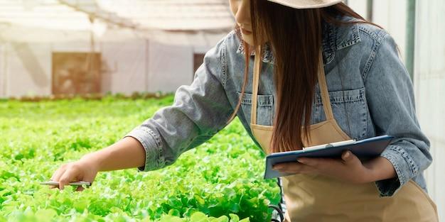 Aziatische vrouwen die groene eik in hydrocultuur plantaardige boerderijen houden en de wortel van greenbo en de kwaliteit controleren