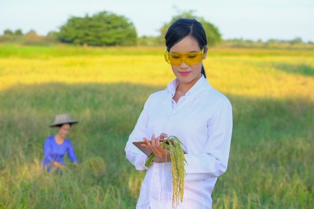 Aziatische vrouwenonderzoeker houdt de kwaliteit van rijst in de boerderij in de gaten