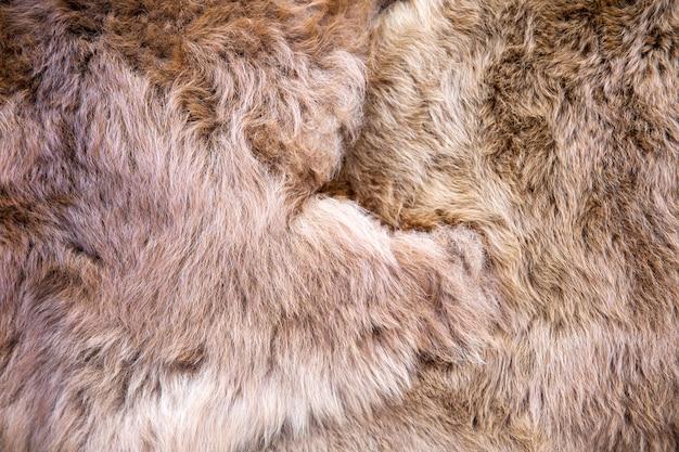 Baby alpaca wol
