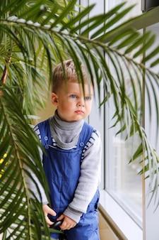 Baby in een blauwe jumpsuit achter een groene boom bij het raam