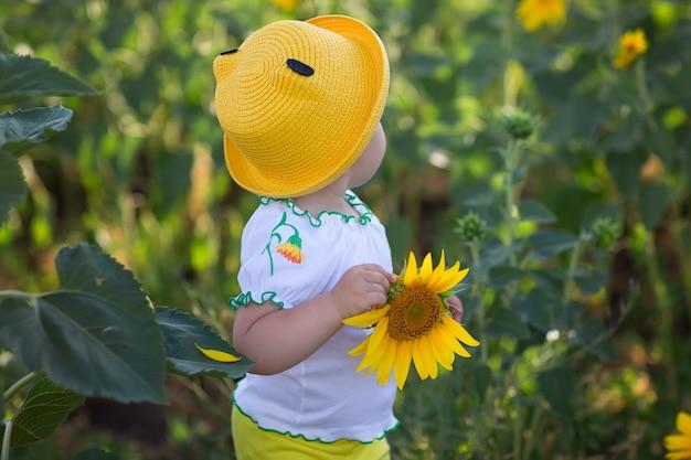 Baby in een gele hoed. zonnebloem veld in de zomer bij zonsondergang. felgele zonnebloemen.