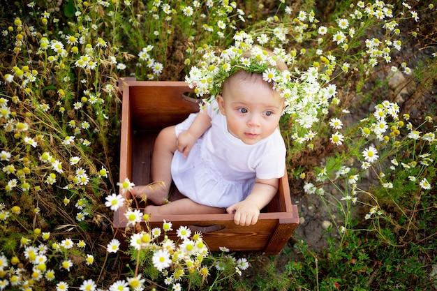 Baby in madeliefjes, klein meisje in een krans van madeliefjes in de zomer op het gazon