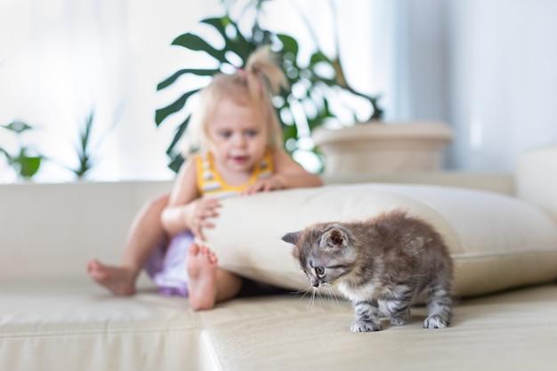 Baby speelt met een klein katje op de bank