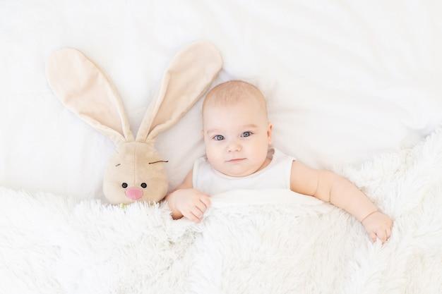 Babyjongen die ligt of wakker wordt in een wieg met een konijntje, schattige, grappige zes maanden oude, glimlachende kleine baby