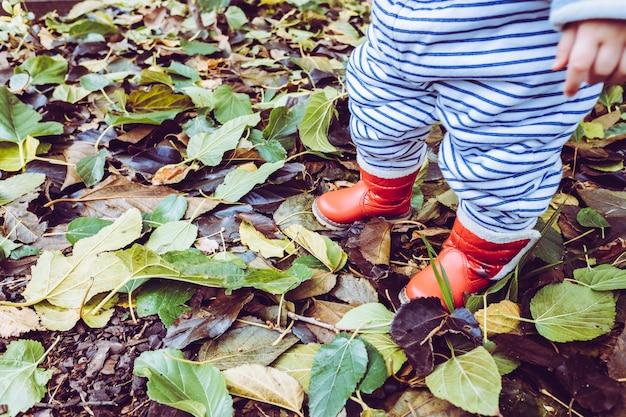 Babymeisje met rode waterlaarzen op droge de herfstbladeren in de winter.