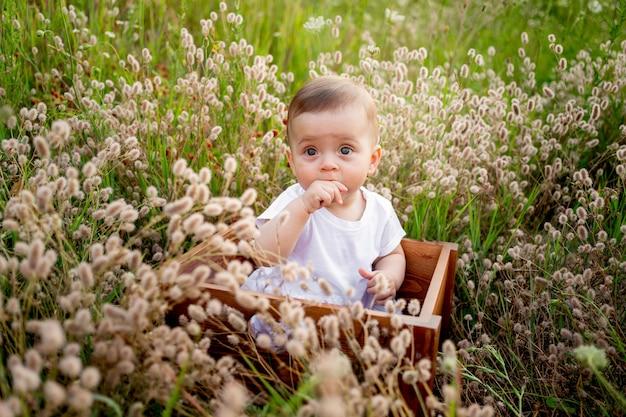 Babymeisje zit onder het veld gras in een witte jurk, gezonde wandeling in de frisse lucht