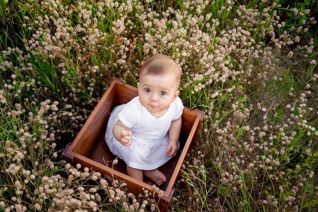 Babymeisje, zittend onder het gras van het veld in een witte jurk, gezonde wandeling in de frisse lucht