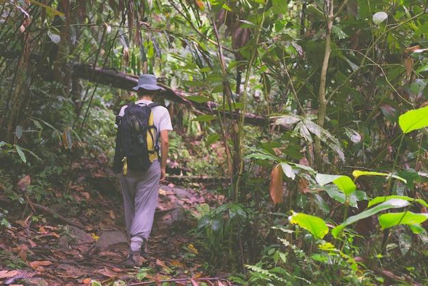 Backpacker die het regenwoud van borneo verkent