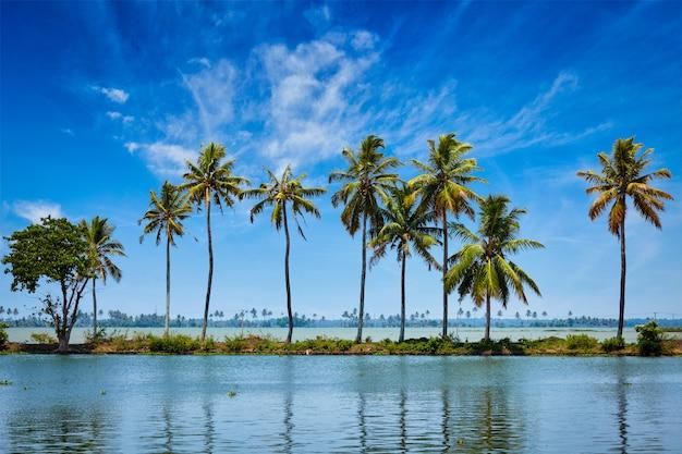 Backwaters van kerala