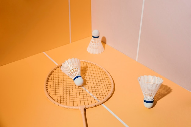 Badmintonracket en shuttles