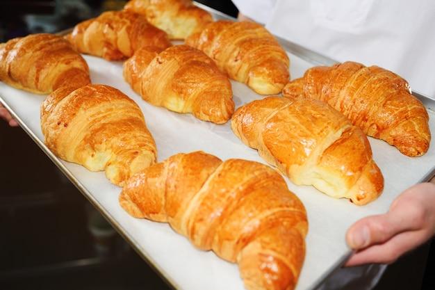 Baker die een dienblad met vers gebakken frans croissantsclose-up houden