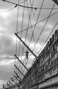 Bakstenen muur met prikkeldraad en dode vogel - zwart-wit foto.