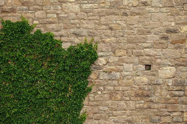 Bakstenen muur van een oud kasteel