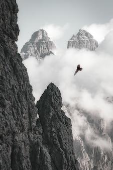 Bald eagle op vlucht in de buurt van rotsformatie
