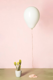 Ballon en cactus