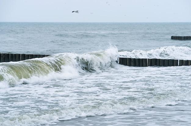 Baltische zee en houten golfbreker die de golf snijden