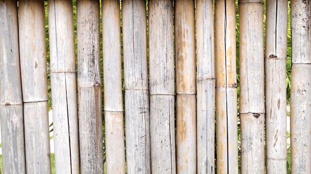 Bamboe hek