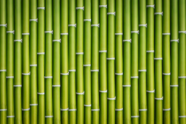 Bamboe kofferbak achtergrond