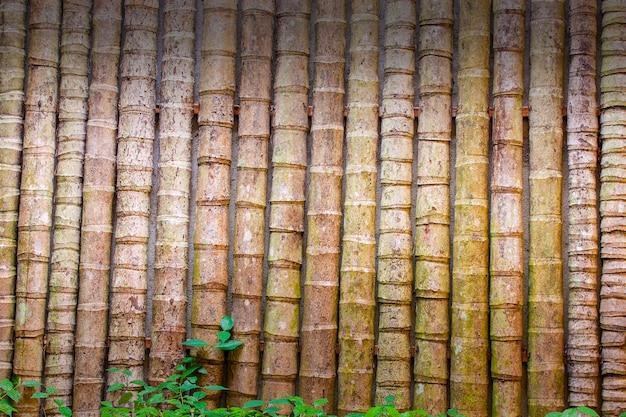 Bamboe wanddecoratie. achtergrond of textuur.