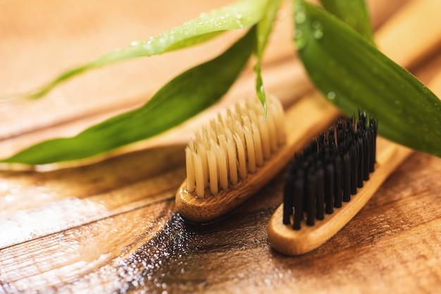 Bamboeplant en milieuvriendelijke tandenborstels op het houten oppervlak
