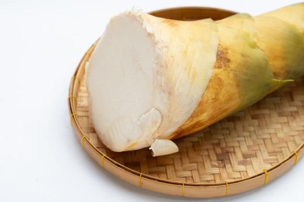 Bamboeshoot in bamboemand