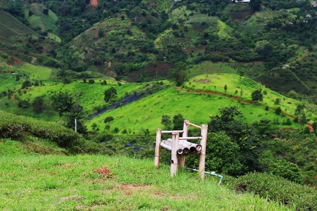 Bamboestoel op gras in theeaanplanting op de berg