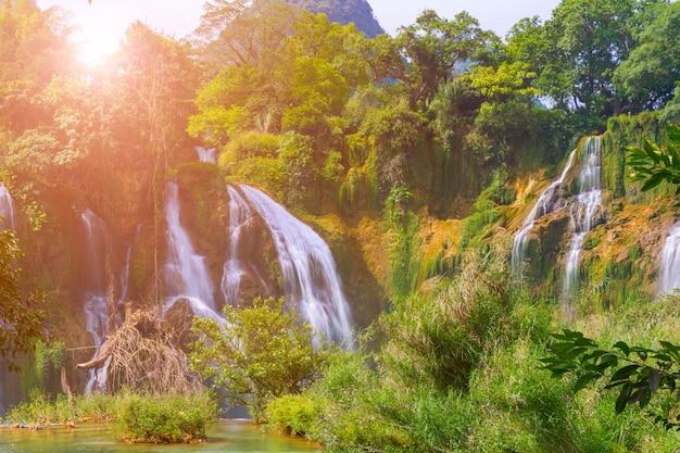 Ban park landelijke stroom openlucht bos