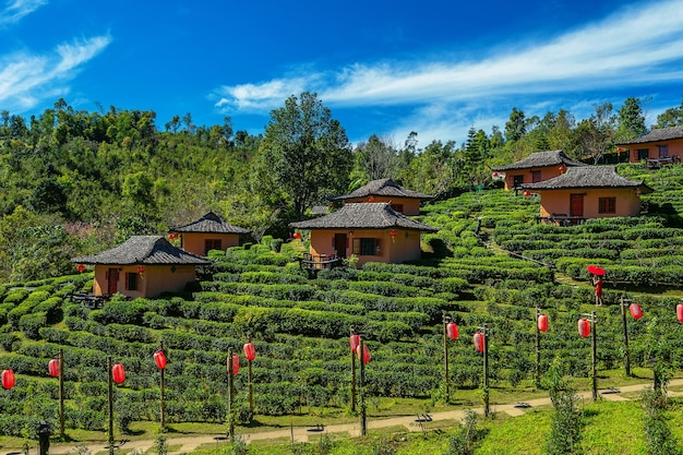 Ban rak thai in mae hong son, thailand.