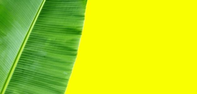 Bananenblad op gele achtergrond.