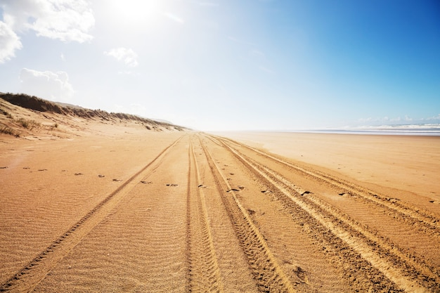 Bandensporen op zandstrand in de pacifische kust, nieuw-zeeland