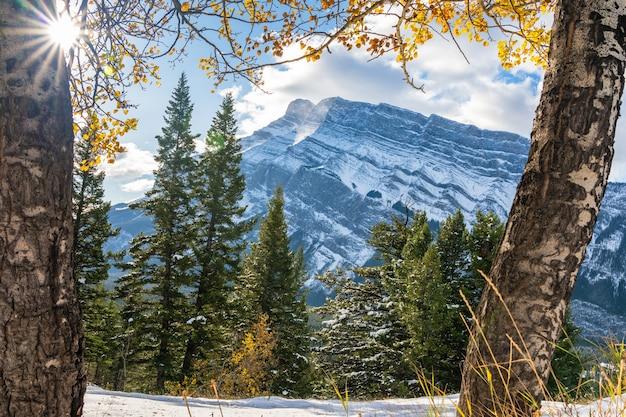 Banff national park landschap besneeuwde mount rundle en bos in de herfst canadese rockies